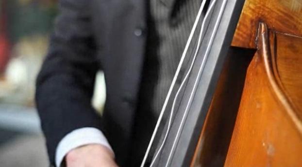 oscillation des cordes de contrebasse en slow motion