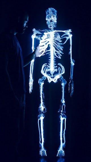 Squelette de verre