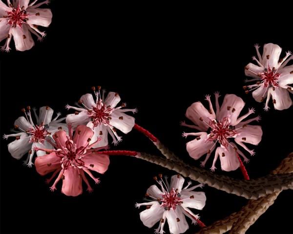 filles-fleurs