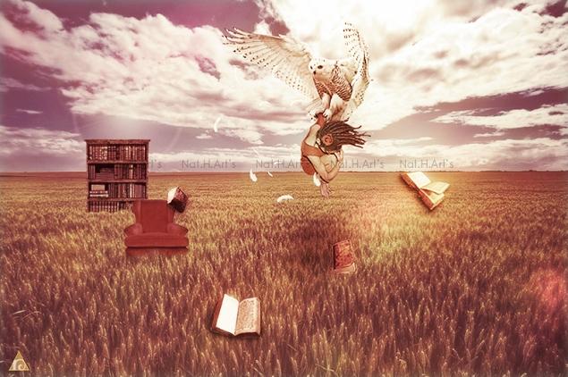 Read & imagine