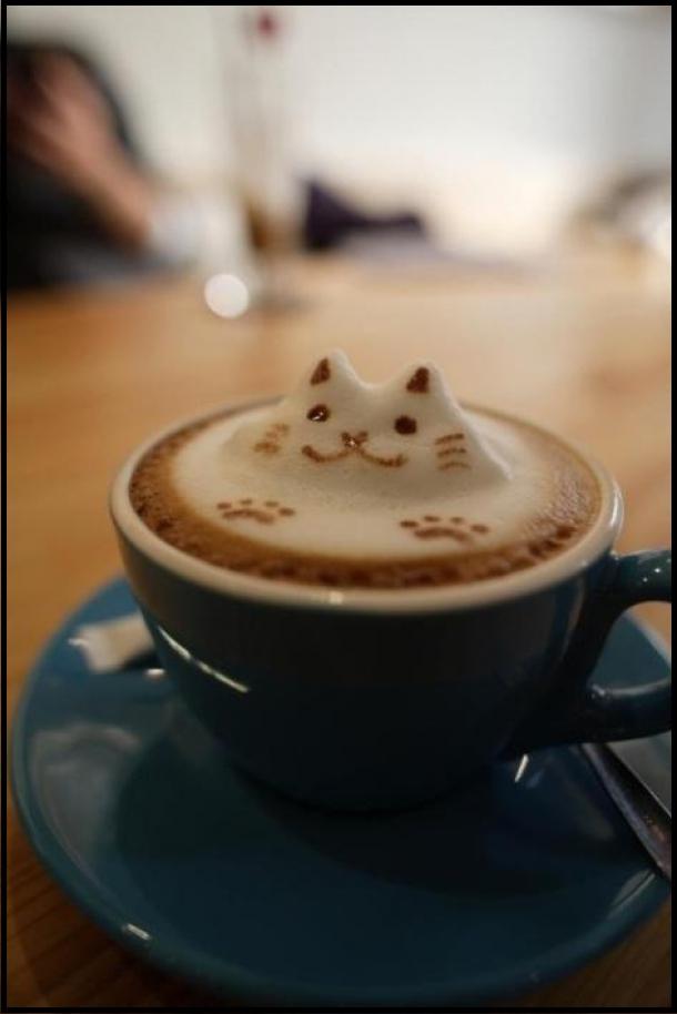 Catpuccino