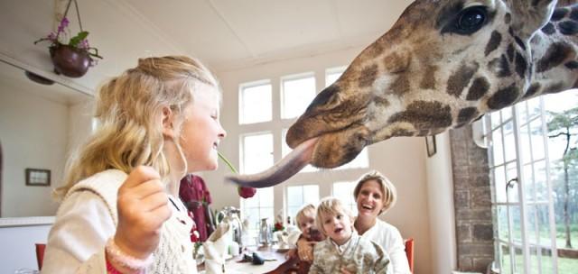 Giraffe Manor - un séjour avec les girafes