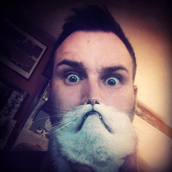 Cat et Dog Beard