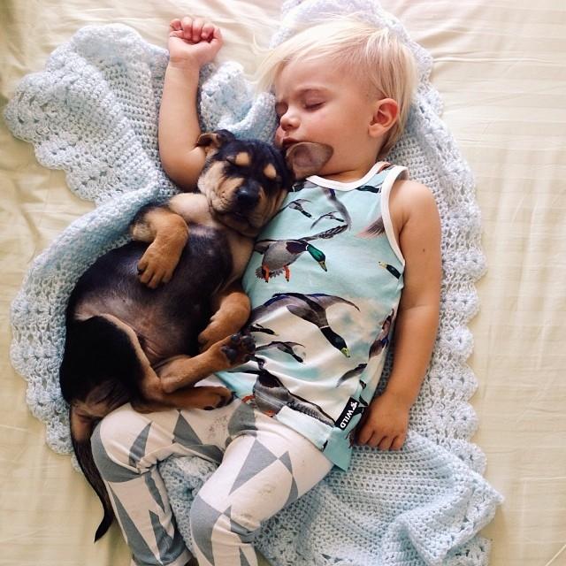 Bebe-chiot-animal-et-enfant-1