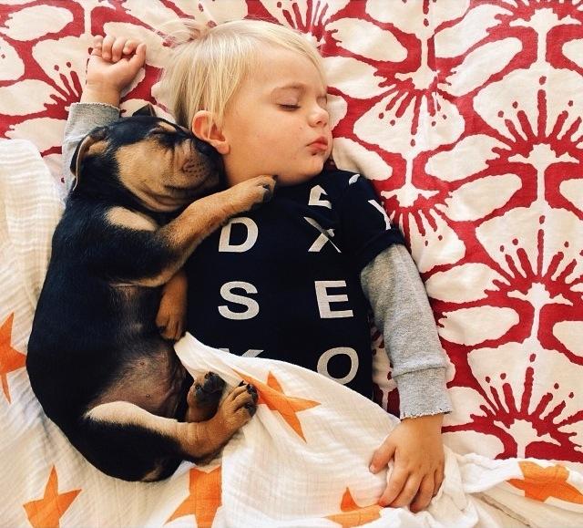 Bebe-chiot-animal-et-enfant-2