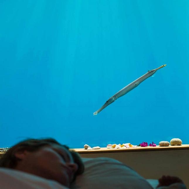 hotel-sous-mer-dormir-6