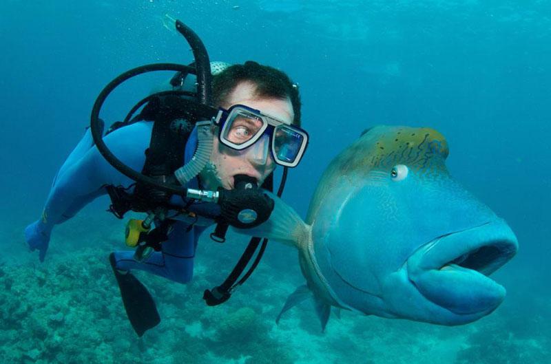 concours photo sous marine