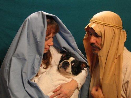 Jésus Marie Joseph Le pire des photos de famille pour noël