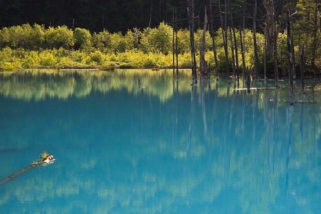 Un lac qui change de couleur