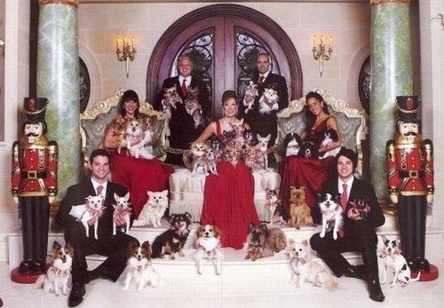 amoureux des chiens Le pire des photos de famille pour noël