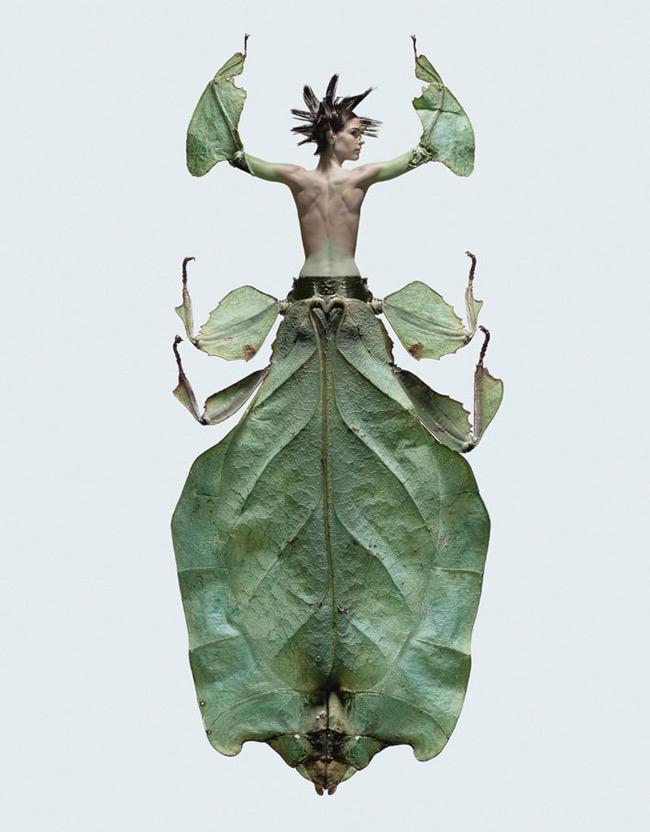 Femme-insecte-4