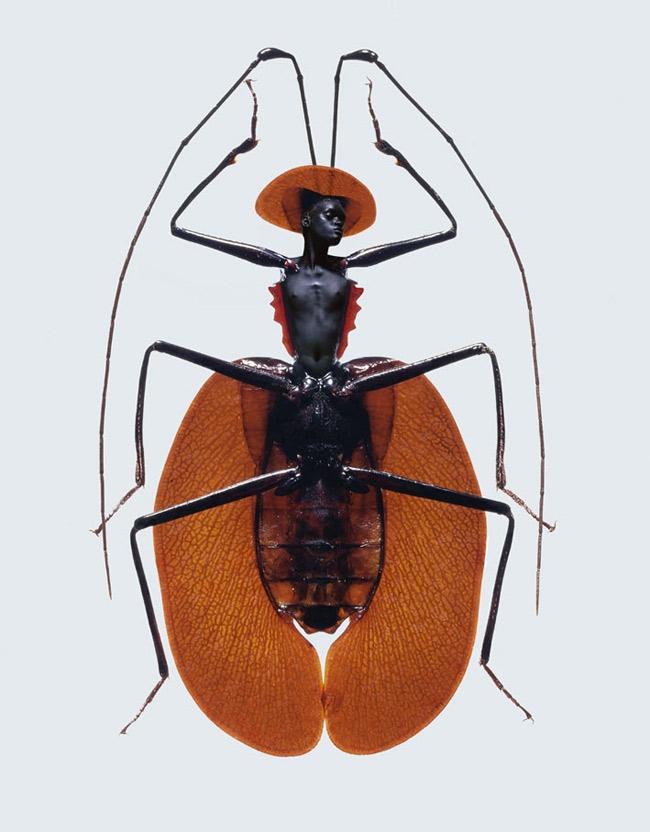 Femme-insecte-6