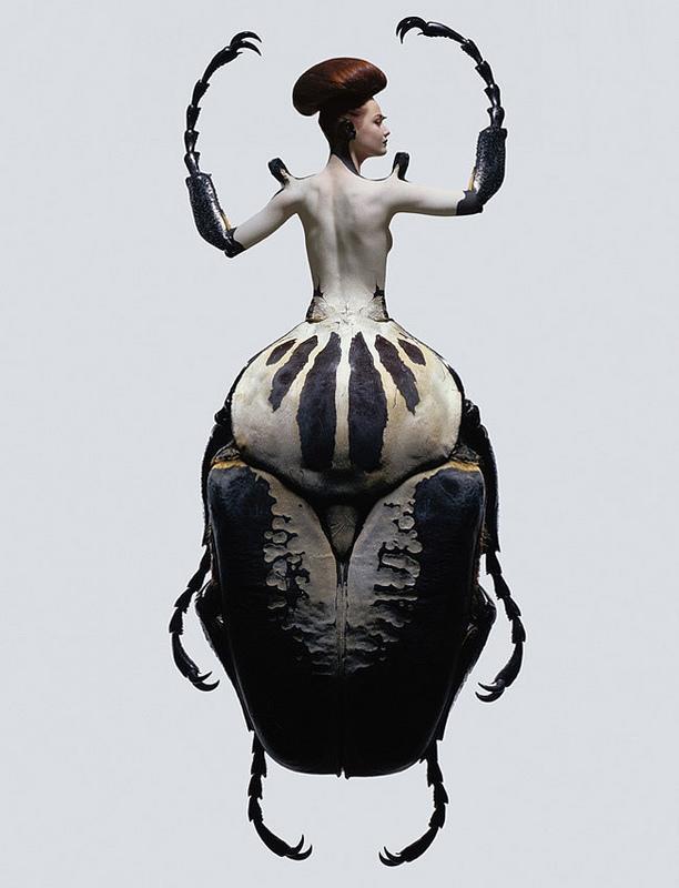 insect-women-seroussi