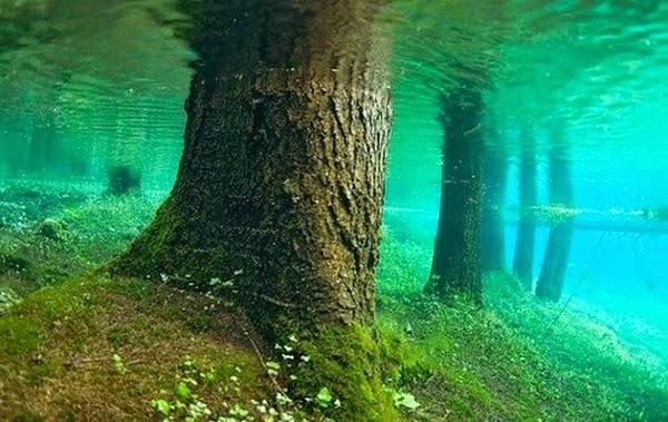 lac-vert-autriche-plongee-4