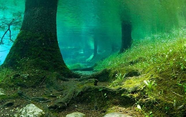 lac-vert-autriche-plongee-7