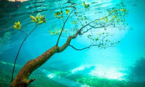 lac-vert-autriche-plongee-8