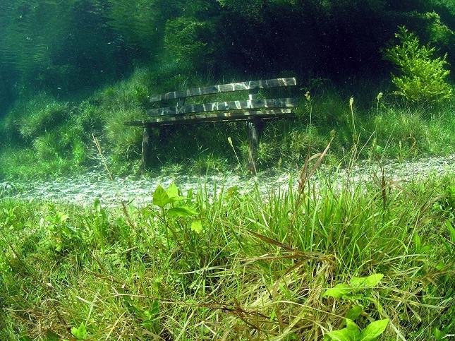 lac-vert-autriche-plongee-9