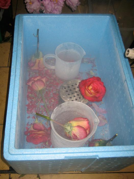 fleurs-21