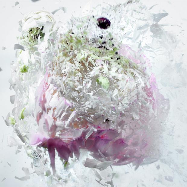 fleurs-9