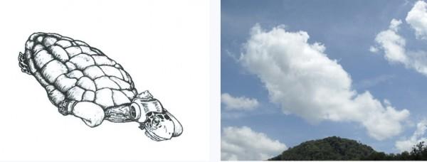 forme-dans-les-nuages-8