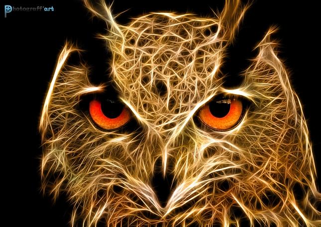 Illustration animal fractal - David Labat-2