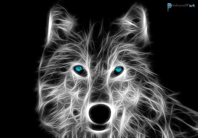 Illustration animal fractal - David Labat (5)