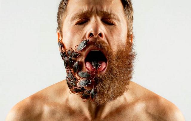 demi-barbe-a-truc-4