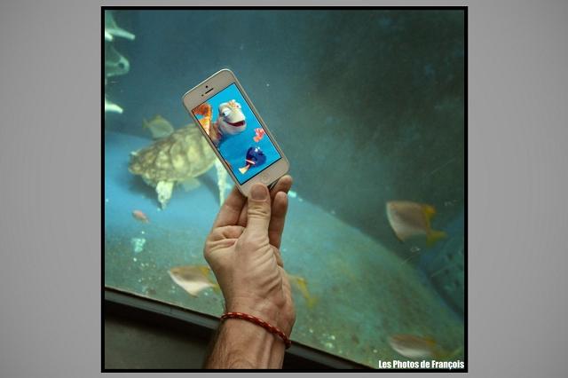 smartphone-fictions-23