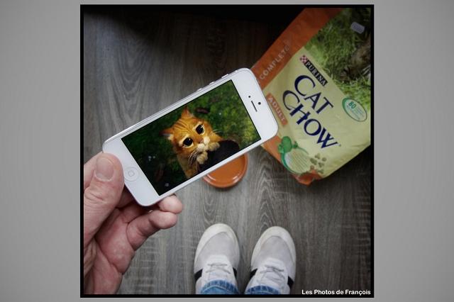 smartphone-fictions-7