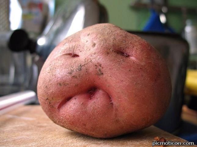 Pareidolie -legume-fruit-1