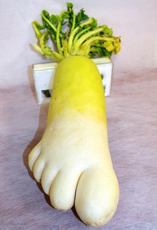Pareidolie -legume-fruit-13