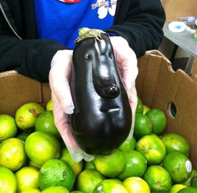 Pareidolie -legume-fruit-17