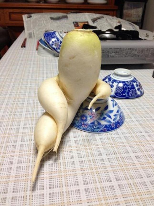 Pareidolie -legume-fruit-30