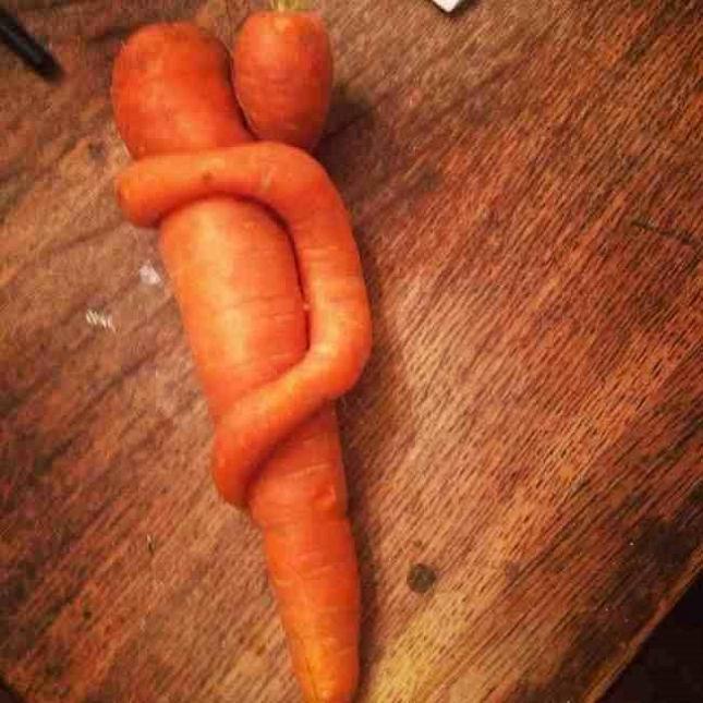 Pareidolie -legume-fruit-6