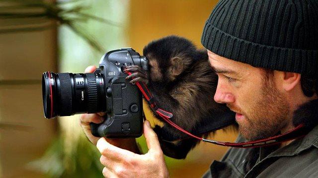 Photographie-animaliere-12