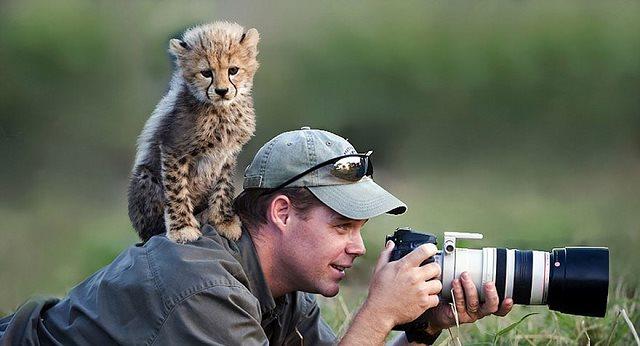 Photographie-animaliere-31
