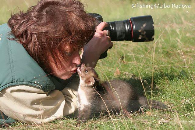 Photographie-animaliere-32