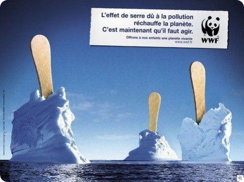 Affiche-WWF-cop214
