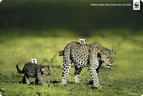 Affiche-WWF-cop215