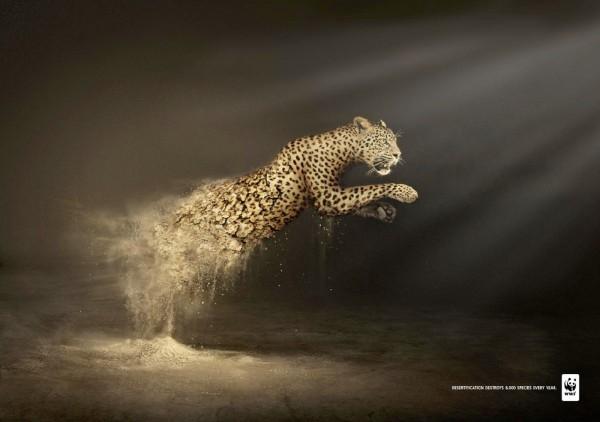 Affiche-WWF-cop219