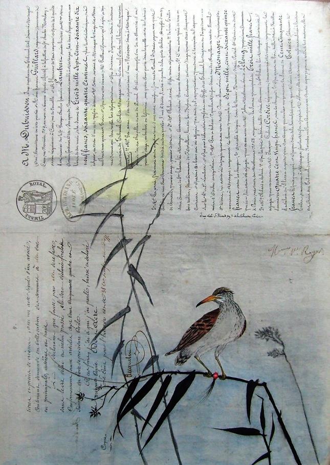 Actes-notaries-David-Chansard-Galerie-Wikilinks-9