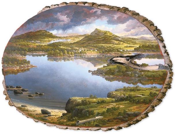 peinture-arbre-souche-tronc-3
