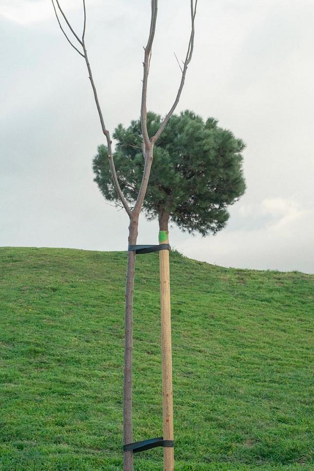 Photo-alignement-superposition-13