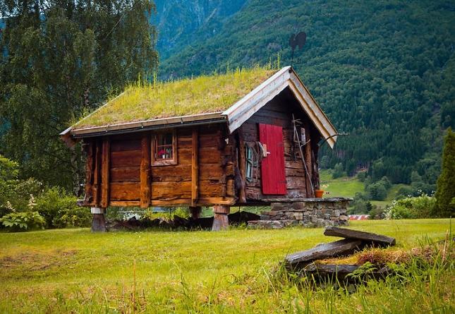 De typiques maisons scandinaves avec leurs toitures for Maison avec toit vegetal