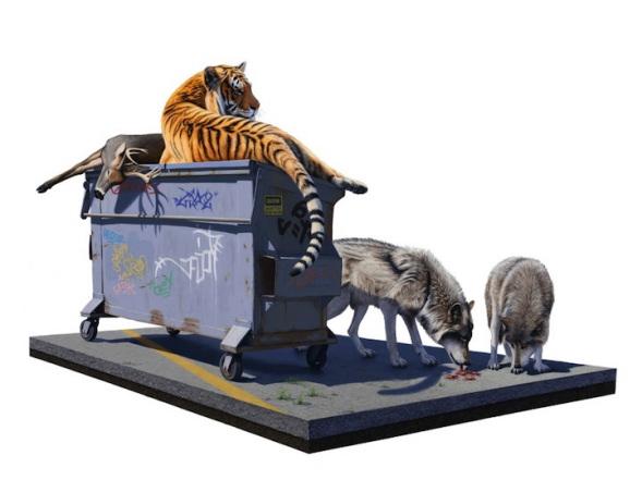 animaux sauvages en ville