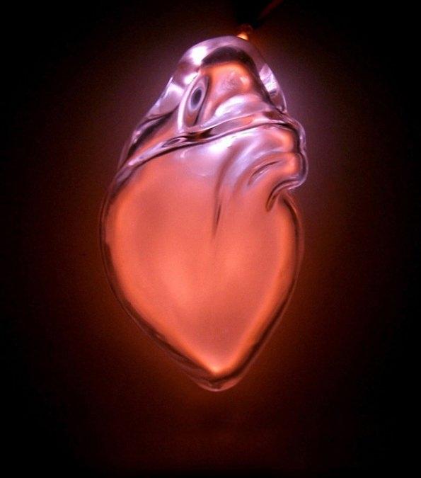 organes humains en verre