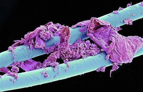 fil dentaire apres utilisation