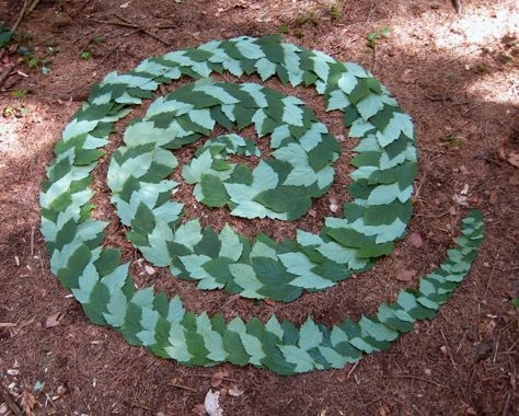 Land-Art-Nature-Feuille-3