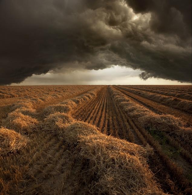 orage-recolte-moisson-Allemangne