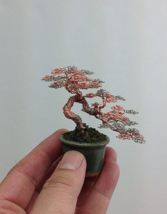 bonsaï miniatures